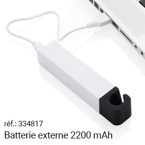 Batterie pour smartphone 2200 mAh